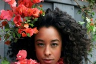 Corinne Bailey Rae: The Idolator Interview
