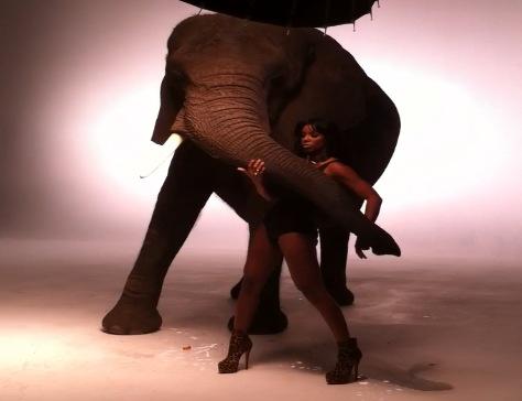 kelly rowland elephant