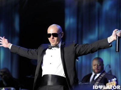 pitbull men in black