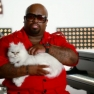 Cee Lo Green Cat The Voice