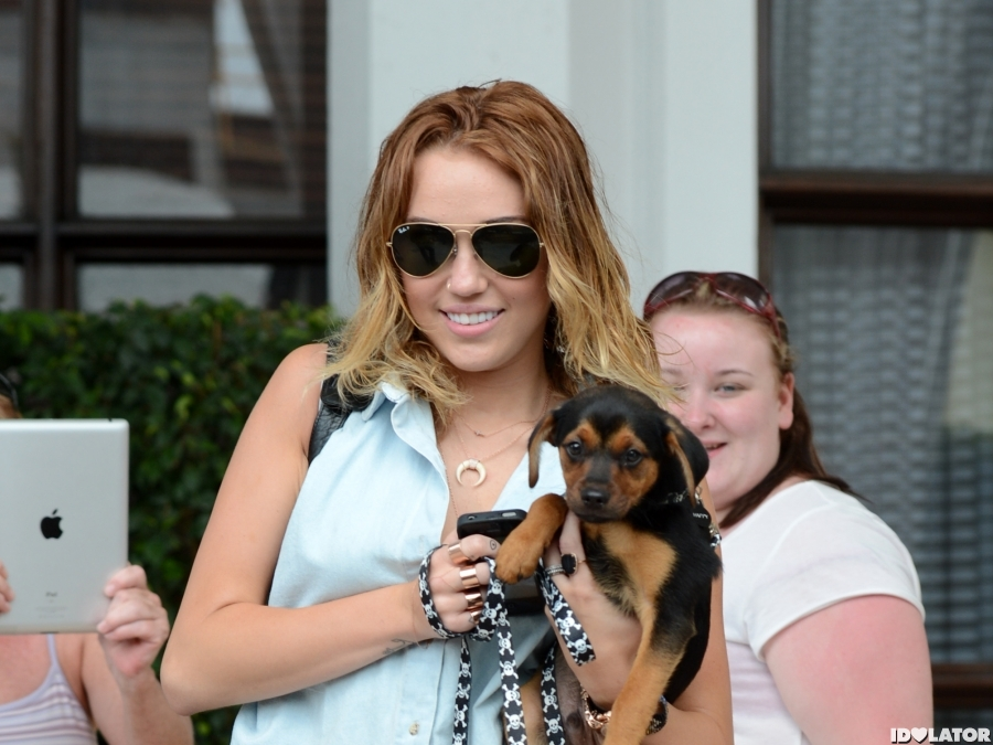 Miley Cyrus Adopts A New Puppy, Happy