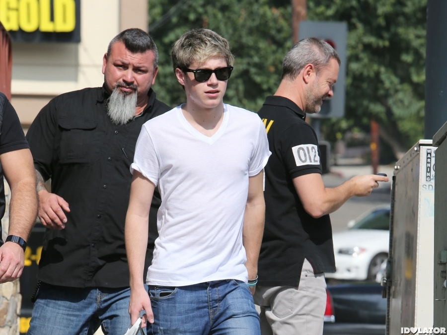 Niall Horan Goes Shopping On Sunset Plaza