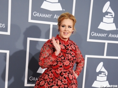 Grammy Awards 2013: Adele Sets Fire To The Red Carpet In Red Dress