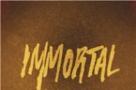 """Kid Cudi's """"Immortal"""": Hear The MGMT-Sampling Track"""