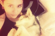 Miley Cyrus Gets A New Puppy After Dog's Death: Morning Mix