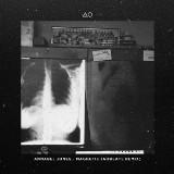 "Annabel Jones' ""Magnetic"" Remixed"