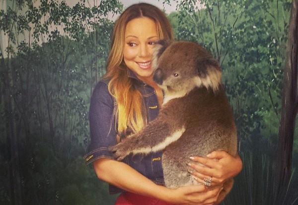 mariah-carey-koala