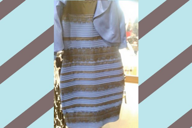 What Colors Are This Dress  BuzzFeed