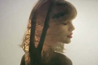 "Taylor Swift Teases Another ""Style"" Video Preview: Watch"