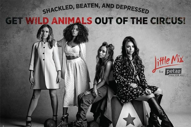 Little Mix Anti Circus AD_p2.ai