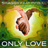 "Shaggy And Pitbull's ""Only Love"" Lyric Video"