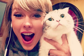 Taylor Swift Has Five Of 2015's Most-Liked Instagram Photos: Morning Mix