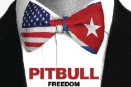 "Pitbull Samples Soup Dragons On New Single ""Freedom"""