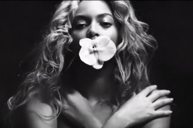 beyonce formation tour teaser flower