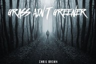 "It Looks Like Chris Brown's New Single Is Called ""Grass Ain't Greener"""