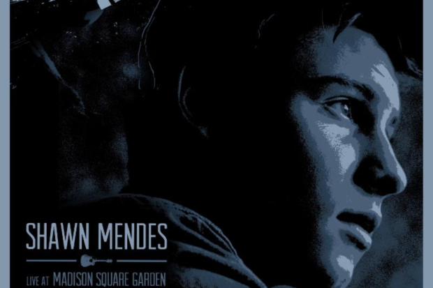 shawn mendes live madison square garden