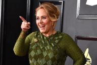 Adele Tells Filthy Joke During Power Outage At Adelaide Concert: Watch