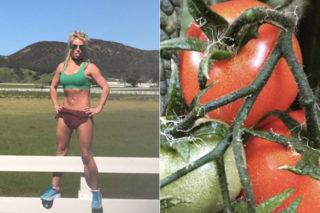 Britney Spears Admires Cameron Diaz's Tomatoes