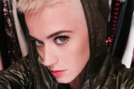 Breaking Hair News: Katy Perry's 'Do Is Now Shorter & Blonder